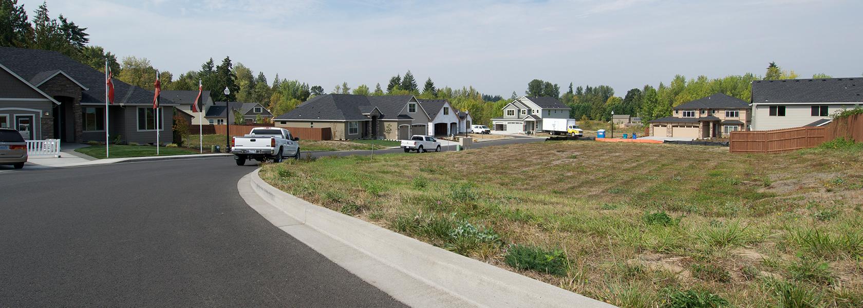 Mt Vista Estates Ginn Development